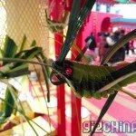 Foto scattata con Meizu MX3