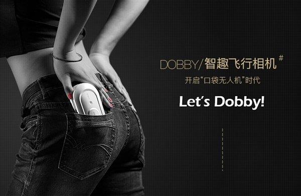 Dobby-6