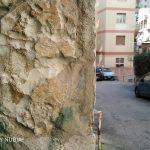 Nubia-Z17-Lite-Photo-15