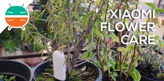 przegląd opieki kwiatowej xiaomi
