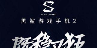 tubarão negro 2