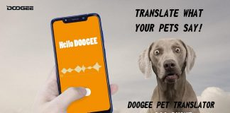 Doogee Dog Phone