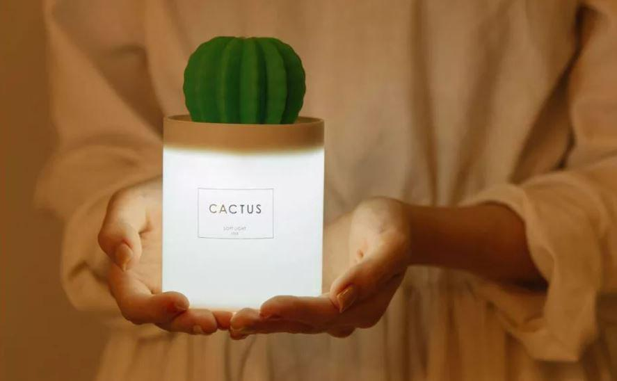 Xiaomi Sothing Cactus Mini Umidificatore & Lampada – Banggood
