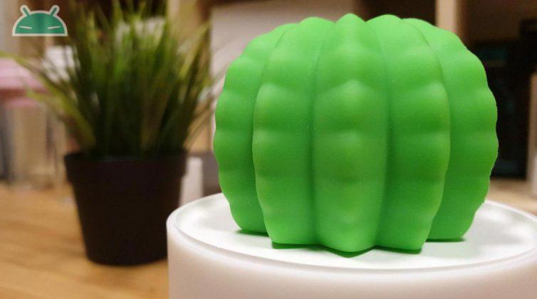 xiaomi cactus 1