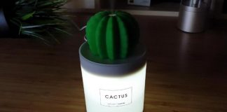 xiaomi kaktus 4