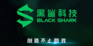 negro tiburón 3