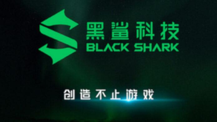 tubarão negro 3