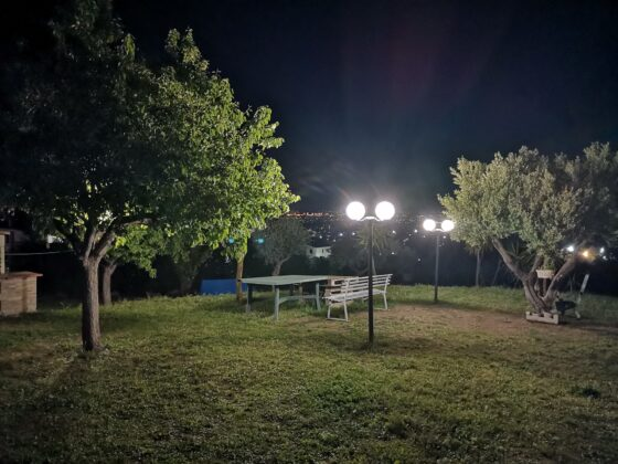 camera test Honor 9X Pro
