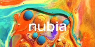 Nubien-Logo