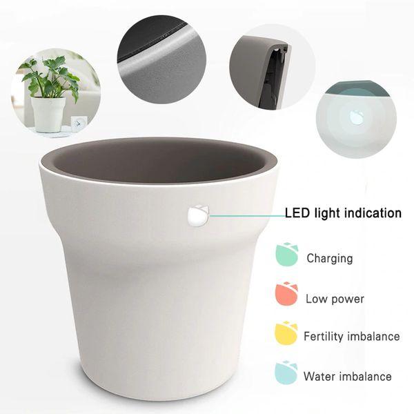 xiaomi youpin vaso smart hhcc flora monitor prezzo 2