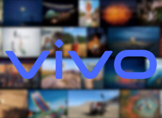 vivo vision plus contest fotografico