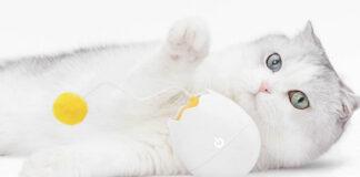 xiaomi youpin gadget giocattolo per gatti furrytail