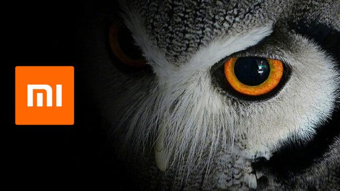 xiaomi fotocamera night owl
