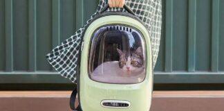 Zaino per gatti Xiaomi PETKIT | Banggood