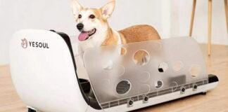tapis roulant per animali cani xiaomi youpin prezzo